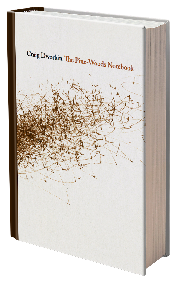 The Pine Woods Notebook by Craig Dworkin